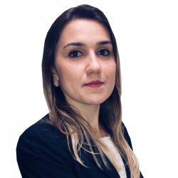 Promotora de Justiça | Profª. Ludmila Castro