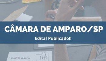 CONCURSO CÂMARA DE AMPARO/SP (06/12/2019): Edital publicado!!
