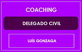 COACHING - DELEGADO CIVIL - Prof. Luís Gonzaga